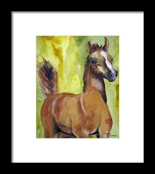 Filly Framed Print featuring the painting Saucy by Jean Blackmer