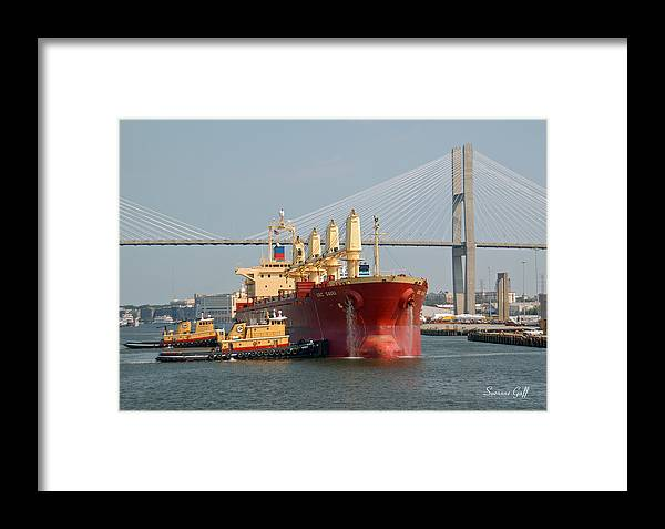 Savannah River Framed Print featuring the photograph Savannah River Scenic by Suzanne Gaff