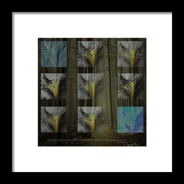 Forest Framed Print featuring the digital art Save The Forests by Tammera Malicki-Wong