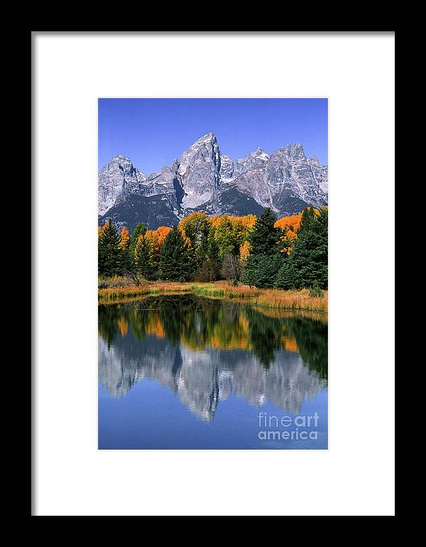 Grand Tetons Framed Print featuring the photograph Schwabacher Landing -grand Teton by Sandra Bronstein