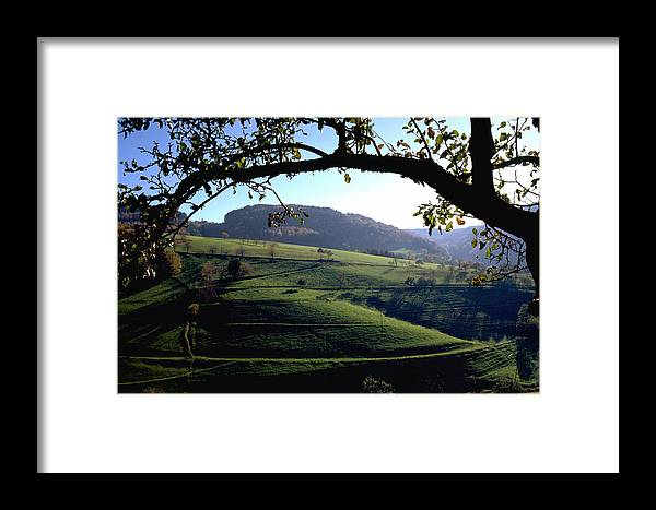 Schwarzwald Framed Print featuring the photograph Schwarzwald by Flavia Westerwelle