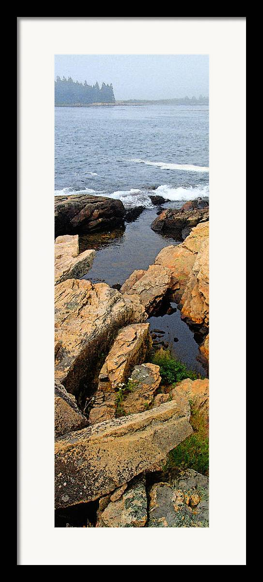 Landscape Framed Print featuring the photograph Scoodic Tidepool by Peter Muzyka