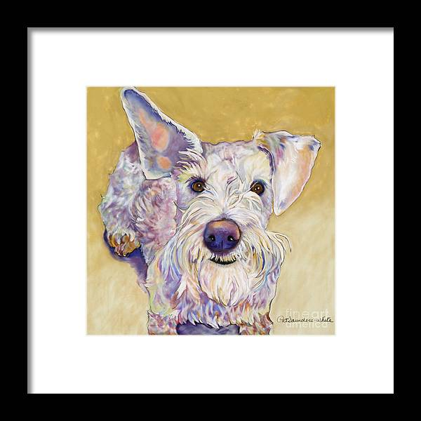 Schnauzer Framed Print featuring the pastel Scooter by Pat Saunders-White
