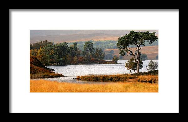 Scotland Framed Print featuring the photograph Scots Pine Loch Tulla by John McKinlay