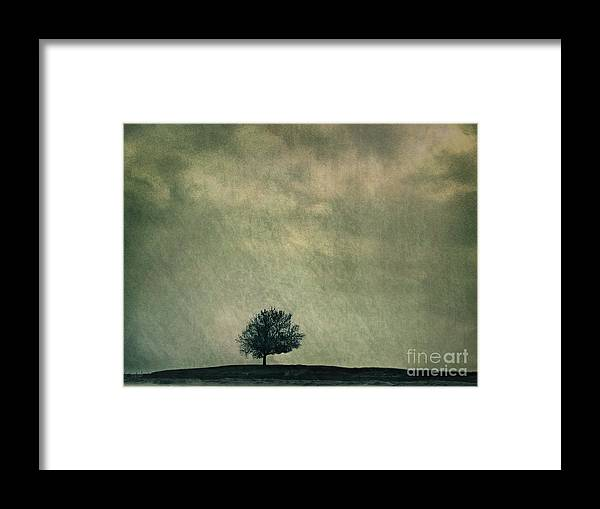 Blue Framed Print featuring the photograph Screaming At The Top Of My Voice by Dana DiPasquale