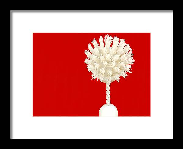 Brush Framed Print featuring the photograph Scrub Brush by Dan Holm