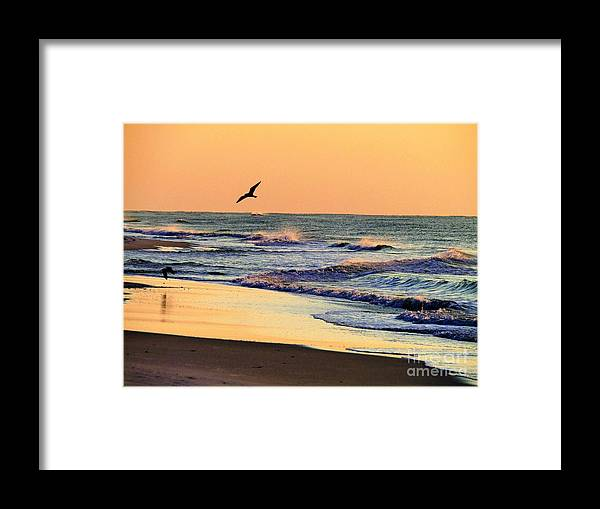 Sunrise Framed Print featuring the photograph Sea It To Believe It by Judy Bugg Malinowski