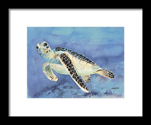 Green Sea Turtle Framed Print featuring the painting Sea Turtle by Arline Wagner