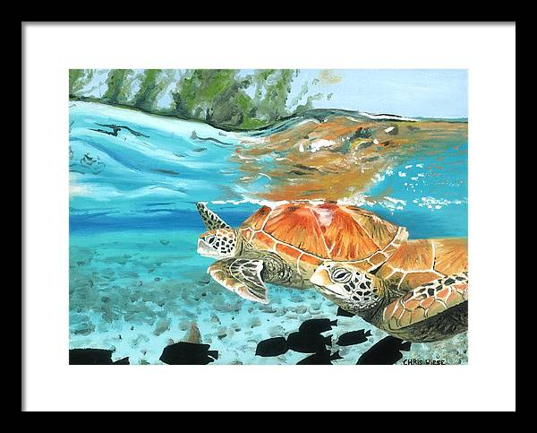Sea Turtles Framed Print featuring the painting Sea Turtles by Chris Wiese