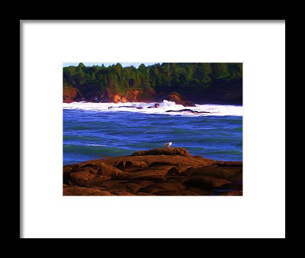 Seascape Framed Print featuring the painting Seagull On Rock by Shelley Bain