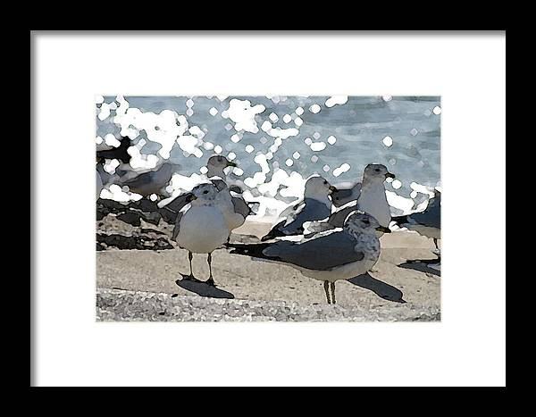 Bird Framed Print featuring the digital art Seagulls In The Cold Sun by Christopher Purcell