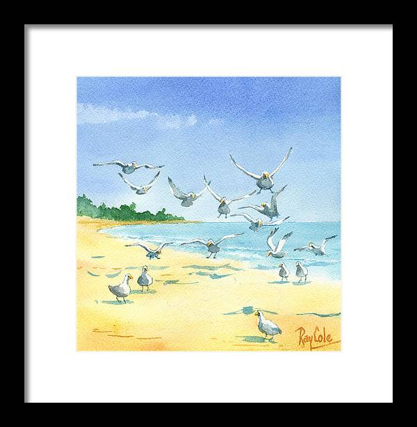 Seagulls Framed Print featuring the painting Seagulls by Ray Cole