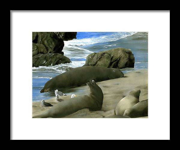 Elephant Seals Framed Print featuring the painting Seal Rock by Charles Parks