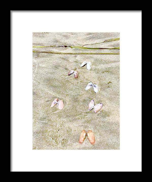 Beach Framed Print featuring the photograph Seashell angel wings by Dina Calvarese