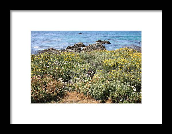Seaside Flowers Framed Print featuring the photograph Seaside Flowers by Carol Groenen