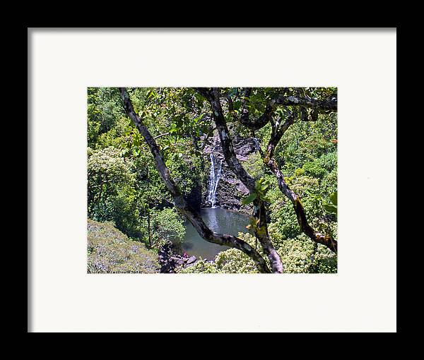 Water Fall Framed Print featuring the photograph Secluded Falls by Nicole I Hamilton
