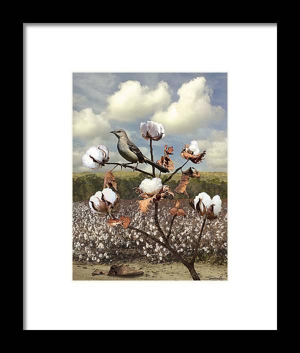 Bird Framed Print featuring the digital art Secret Of The Mockingbird by M Spadecaller