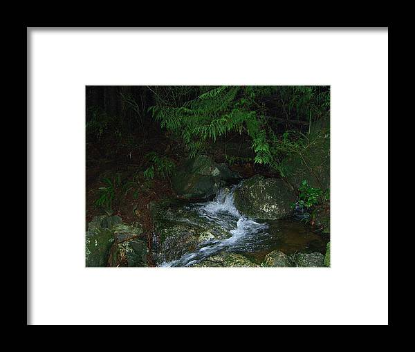 Water Framed Print featuring the photograph Secret Water by Jim Thomson