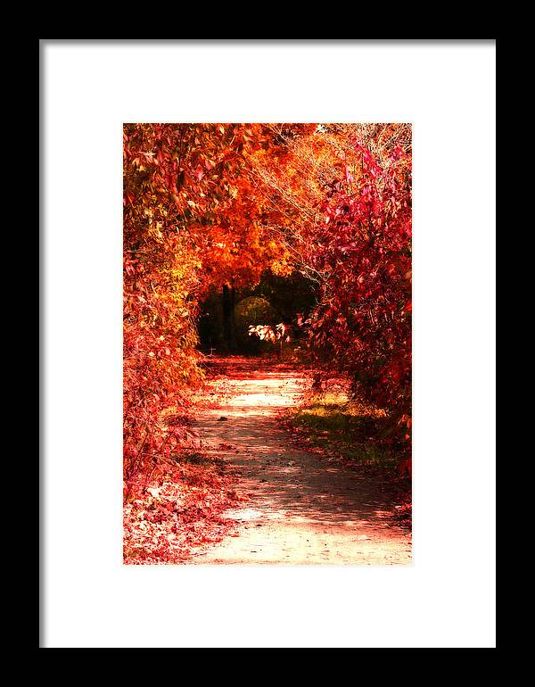 Tunnel Framed Print featuring the photograph Secrets by Cathy Beharriell
