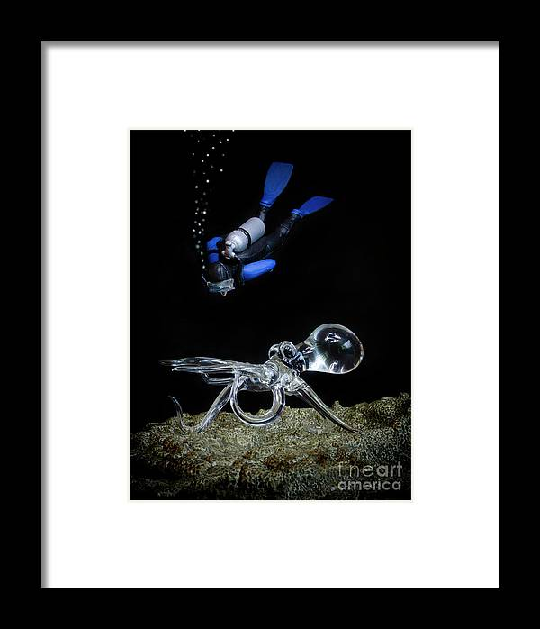 Seeing Eye To Eye Framed Print featuring the photograph Seeing Eye To Eye by Bob Christopher