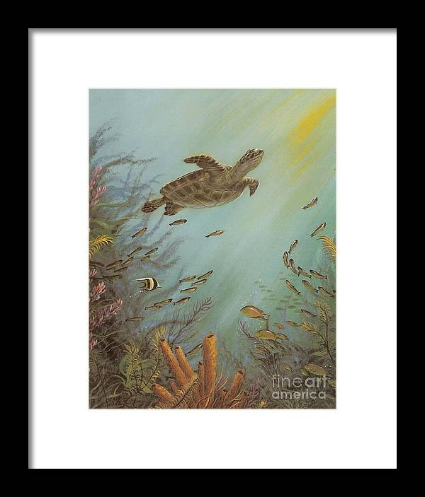 Sea Turtle Framed Print featuring the painting Seeking Solitude by Susan Elizabeth Wolding