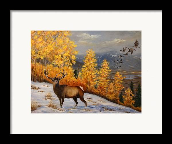 Wildlife Framed Print featuring the painting Selkirk Elk by Lucille Owen-Huston