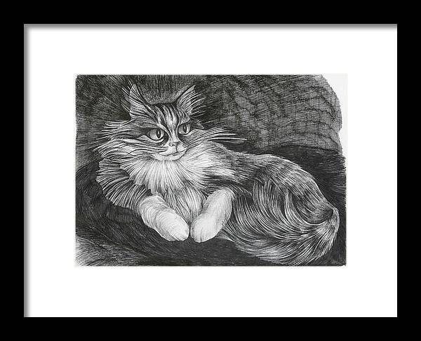 Cat Framed Print featuring the drawing Semona by Anna Duyunova