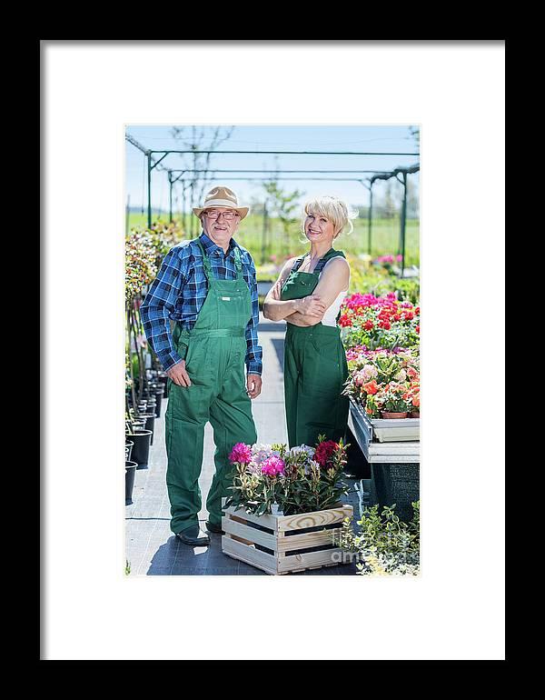 Garden Framed Print featuring the photograph Senior Gardener And Middle-aged Gardener At Work. by Michal Bednarek