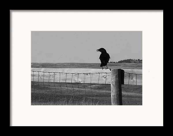 South Dakota Framed Print featuring the photograph Sentinel by Harold Clayberg