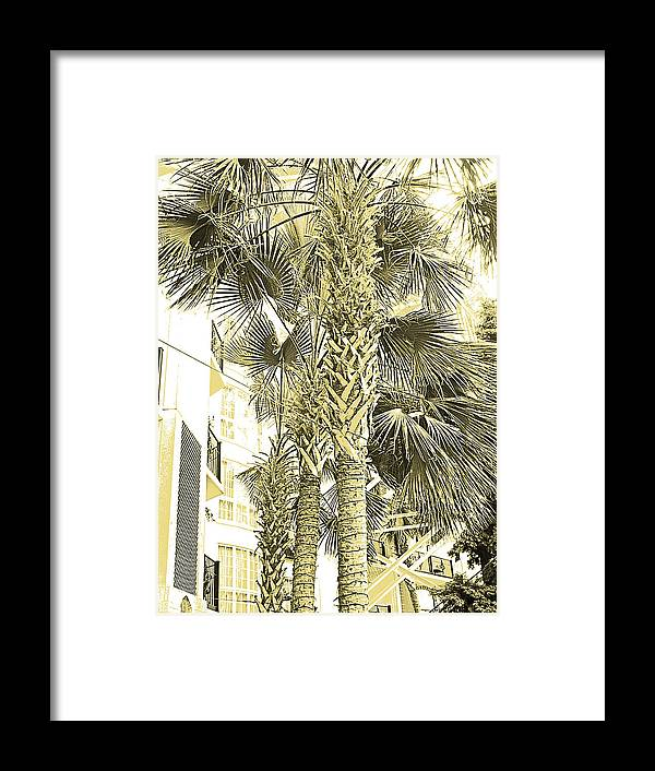 Digital Art Framed Print featuring the photograph Sepia Toned Pen And Ink Palm Trees by Marian Bell