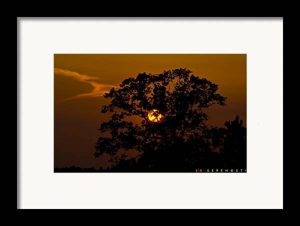 Nature Framed Print featuring the photograph Serengeti by Jonathan Ellis Keys