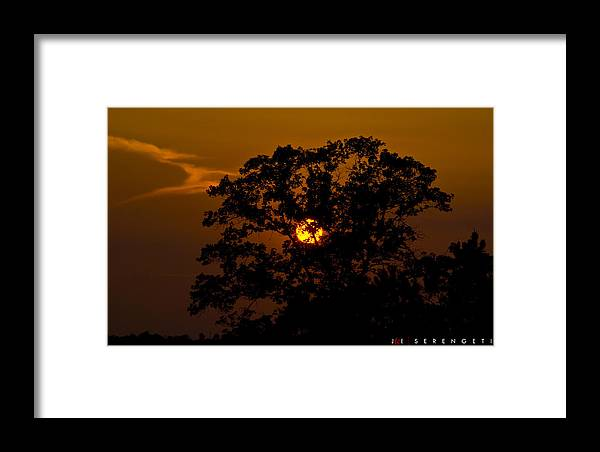 Nature Framed Print featuring the photograph Serengeti by Jonathan Ellis Keys