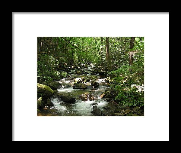 Mountain Stream Framed Print featuring the photograph Serenity by Diane Frick
