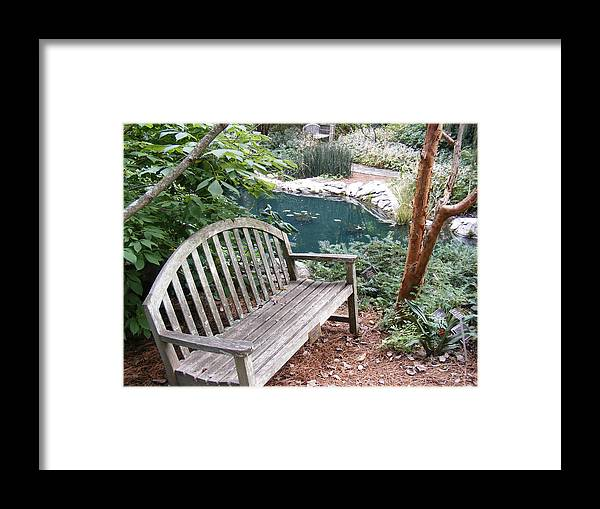 Bench Framed Print featuring the photograph Serenity by James and Vickie Rankin