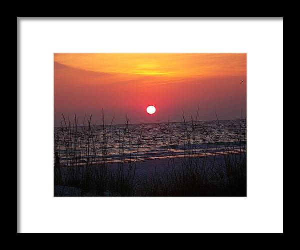 Sunset Framed Print featuring the photograph Setting The Night by Amanda Vouglas