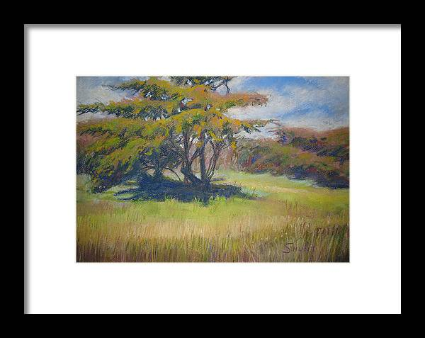Tree Framed Print featuring the painting Shade by Shirley Braithwaite Hunt