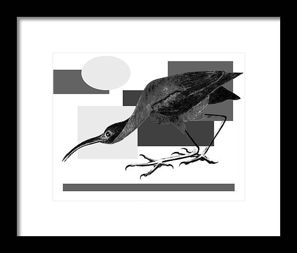 Bird Framed Print featuring the painting Shadow Dancing by Tess M J Iroldi
