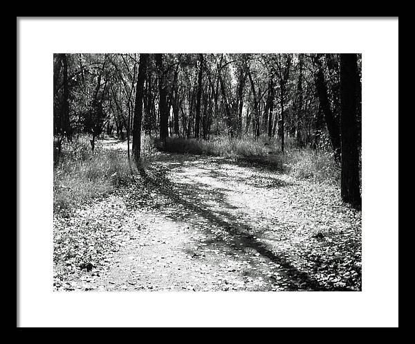 Landscape Framed Print featuring the photograph Shadow Path by Allan McConnell