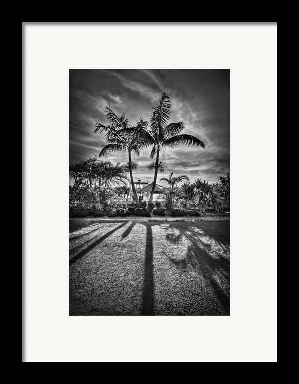 Boca Grande Framed Print featuring the photograph Shadow Waltz by Evelina Kremsdorf