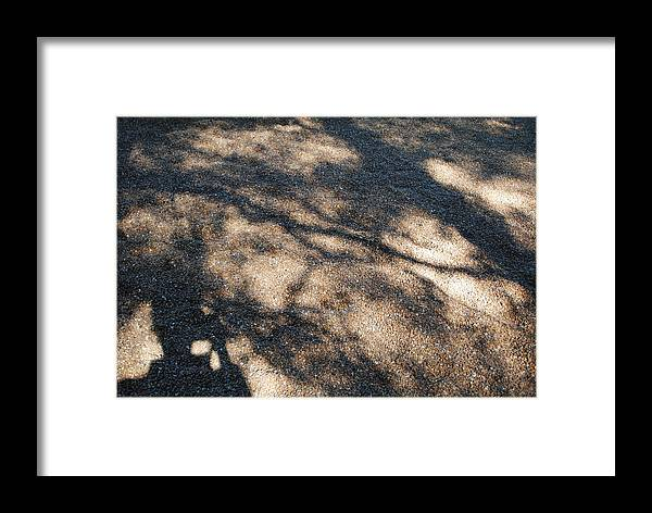 Shadows Framed Print featuring the photograph Shadowplay by Margaret Fronimos