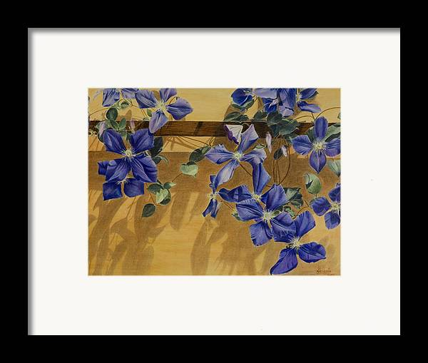 Clematis Framed Print featuring the painting Shadows Dancing by Nik Helbig