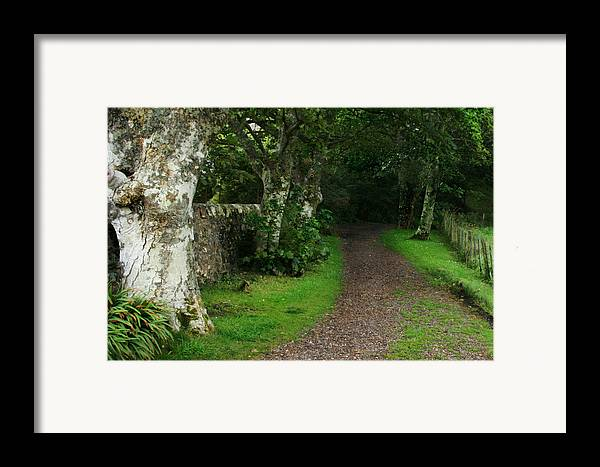 Scotland Framed Print featuring the photograph Shady Lane by Warren Home Decor