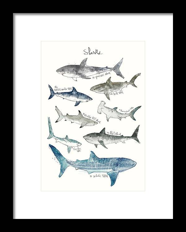 Sharks Framed Print featuring the painting Sharks by Amy Hamilton
