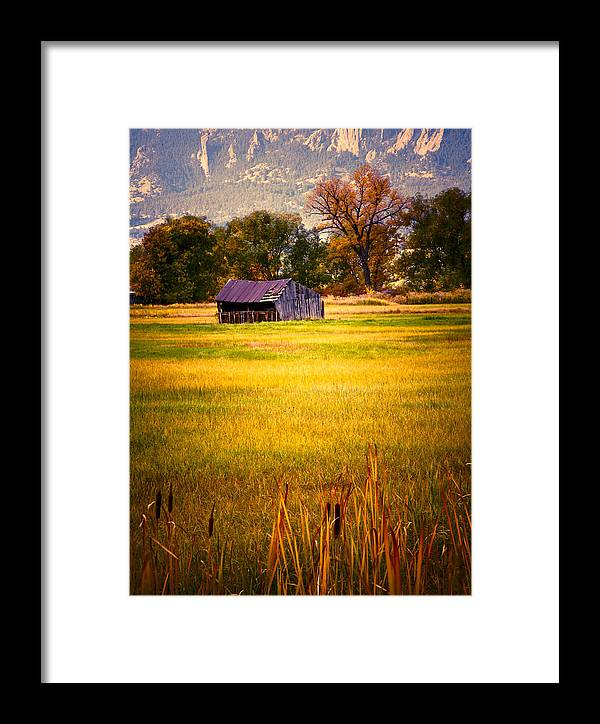 Shed Framed Print featuring the photograph Shed In Sunlight by Marilyn Hunt