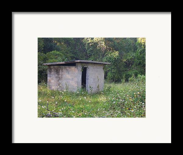 Nature Framed Print featuring the photograph Shed The Old by Stephanie Richards