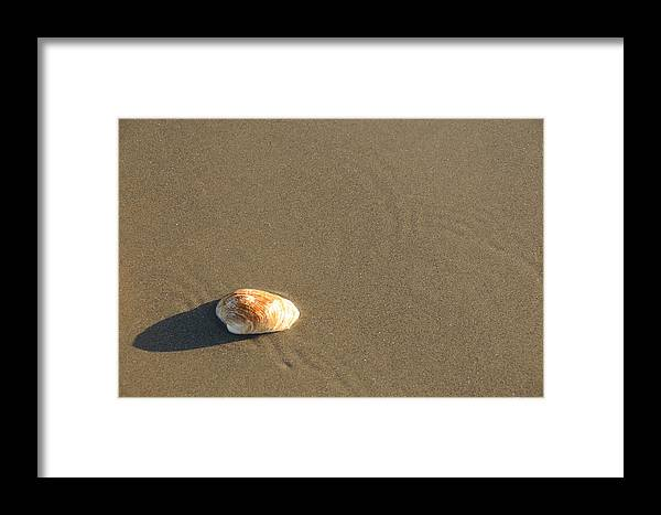 Beach Shell Sand Sea Ocean Framed Print featuring the photograph Shell And Waves Part 1 by Alasdair Turner