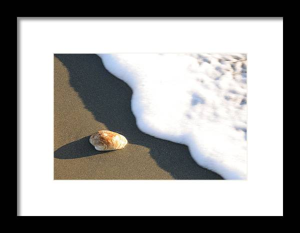 Beach Shell Sand Sea Ocean Framed Print featuring the photograph Shell And Waves Part 3 by Alasdair Turner