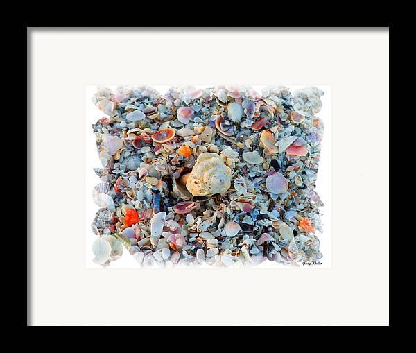 Shells Framed Print featuring the digital art Shells by Judy Waller