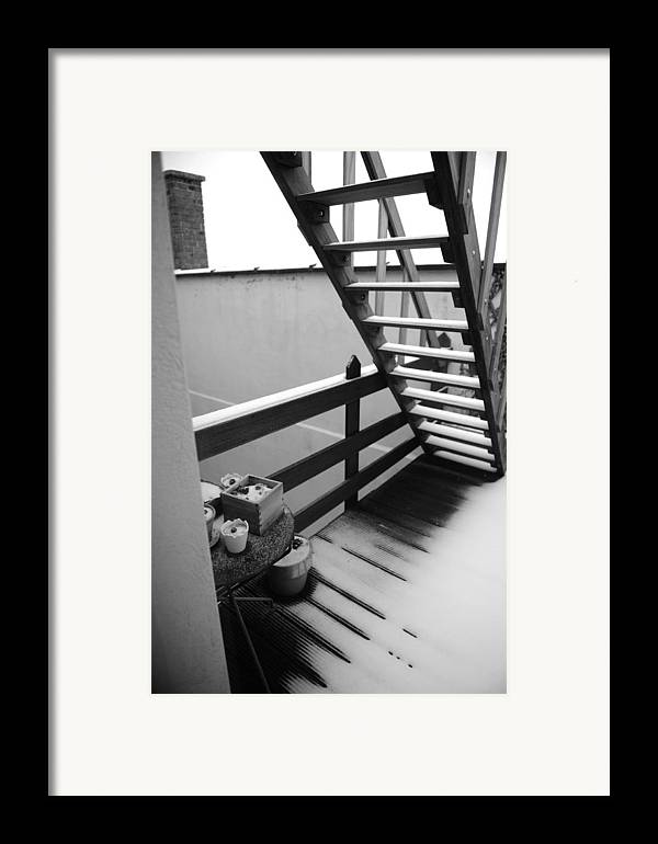 Stairs Framed Print featuring the photograph Shelter by Jessica Rose