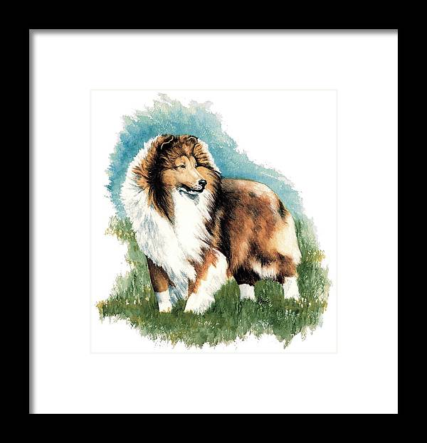 Shetland Sheepdog Framed Print featuring the painting Sheltie Watch by Kathleen Sepulveda